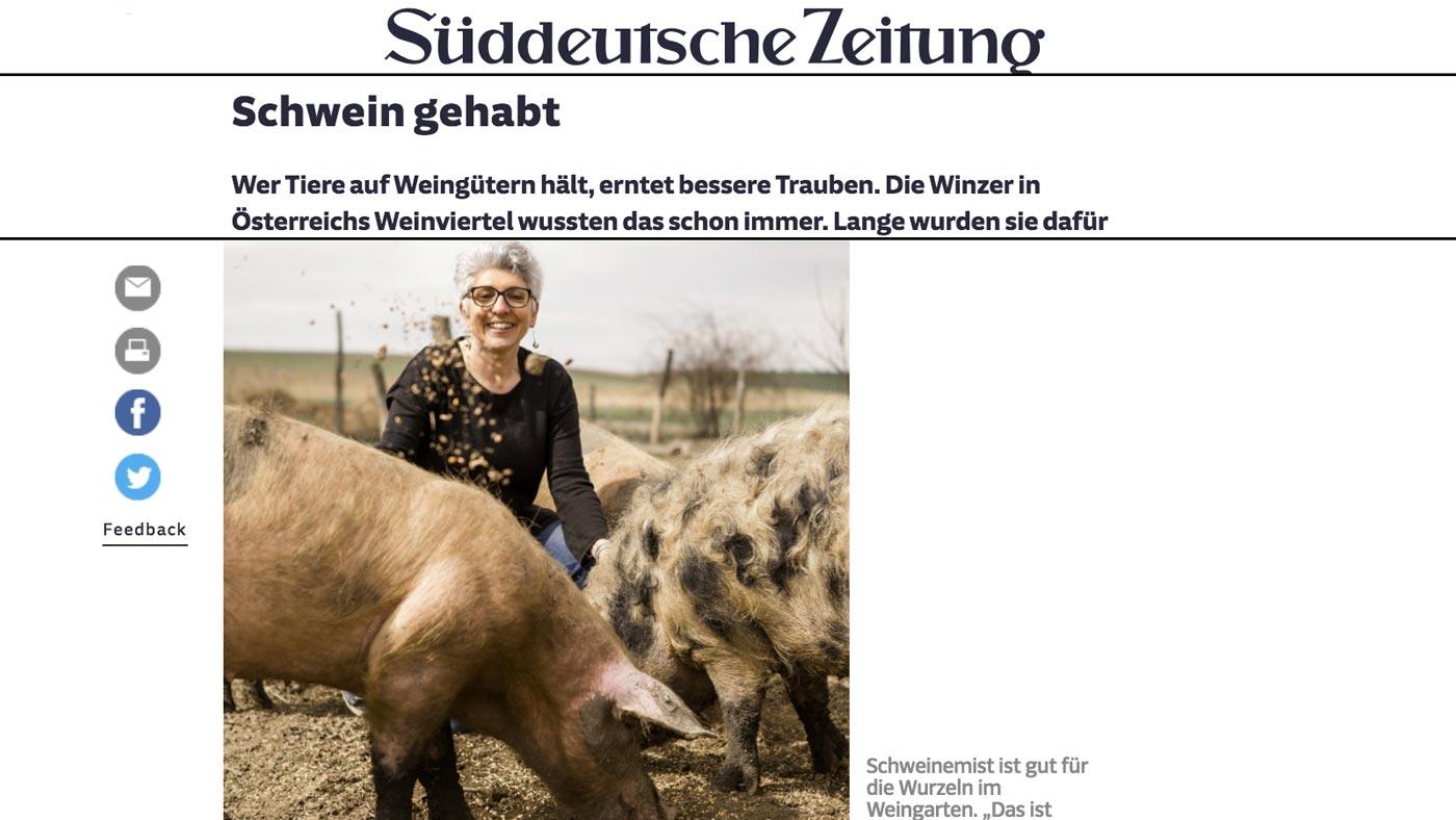 Screenshot des Süddeutsche-Zeitung-Artikels über das Weingut Faber-Köchl